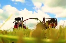 О деятельности сельскохозяйственного производственного кооператива «Озёры» Гродненского района